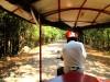 Cambodge - Angkor : en tuk-tuk avec Spider