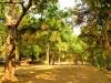 Cambodge - Angkor : groupe des Roluos, Bakong