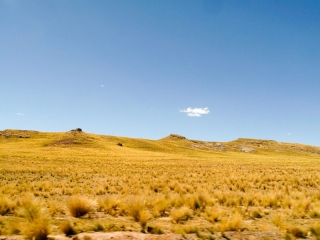 Pérou - route Cusco-Arequipa : Altiplano