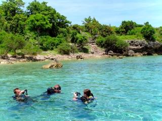 Indonésie - Bali : plongée à Menjangan