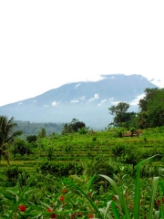 Indonésie - Bali : Sidemen, le volcan Gunung Agung