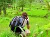 Indonésie - Bali : Sidemen, Benjamin photographe
