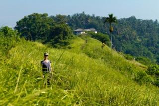 Indonésie - Bali - Ubud : balade