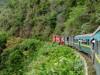 Madagascar - train Manakara : landscape