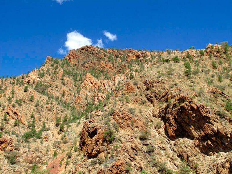 Australie - Flinders Ranges : formations rocheuses de 600 millions d'années !