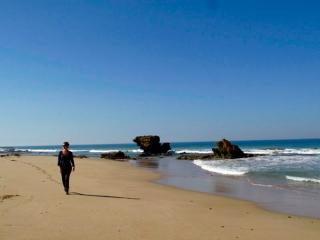 Australie : ballade sur une plage de la Great Ocean Road