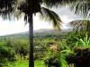 Chili - Ile de Pâques : la vue depuis notre guesthouse