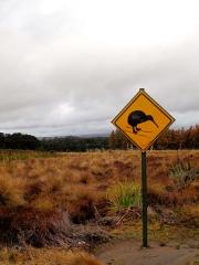 Nouvelle Zélande - Parc national Tongariro