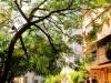 Inde - Mumbaï : Colaba