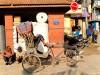 Népal - Katmandou : scène de rue