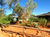 Australie : sur la route vers Kings Canyon (station service bush style)