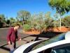 Australie : nettoyer le pare-brise, un indispensable