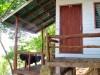 Thaïlande - Koh Phi Phi : Tohko beach, notre deuxième bungalow