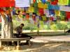 Népal - Lumbini :