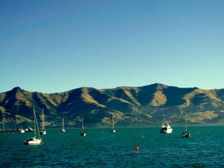 Nouvelle Zélande - Péninsule de Banks : Akaroa