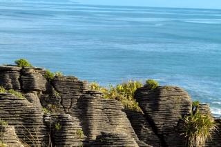 Nouvelle Zélande - Pancake Rocks & Blowhole NP : ballade