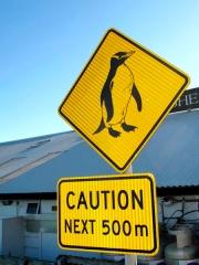 Nouvelle Zélande - Nelson