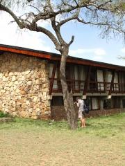Serengeti : Benjamin reporter