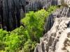Madagascar - Tsingy de Bemaraha : sommet