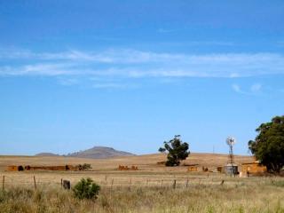 Australie : sur la route au sud des Flinders Ranges