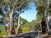 Australie - Clare Valle : la route des vins