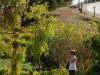Australie - Barossa Valley : la route des vins
