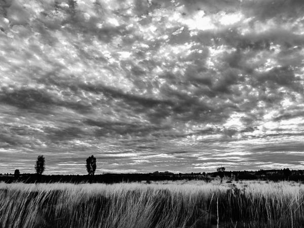 Australie : Uluru