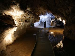 waitomo-cave_1