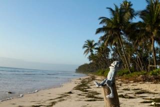 Zanzibar - Matemwe : Charlie prend le soleil